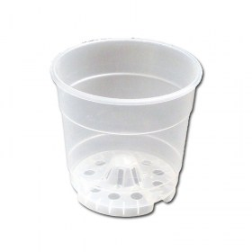 clear-orchid-pot-4-8003