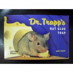 dr-trapp-s-